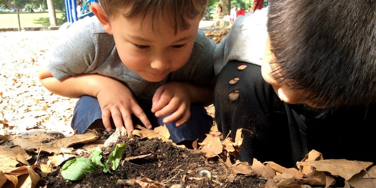 Children observe bug on nature playground