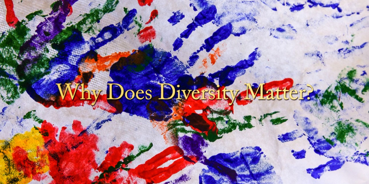 Why Diversity Matters?